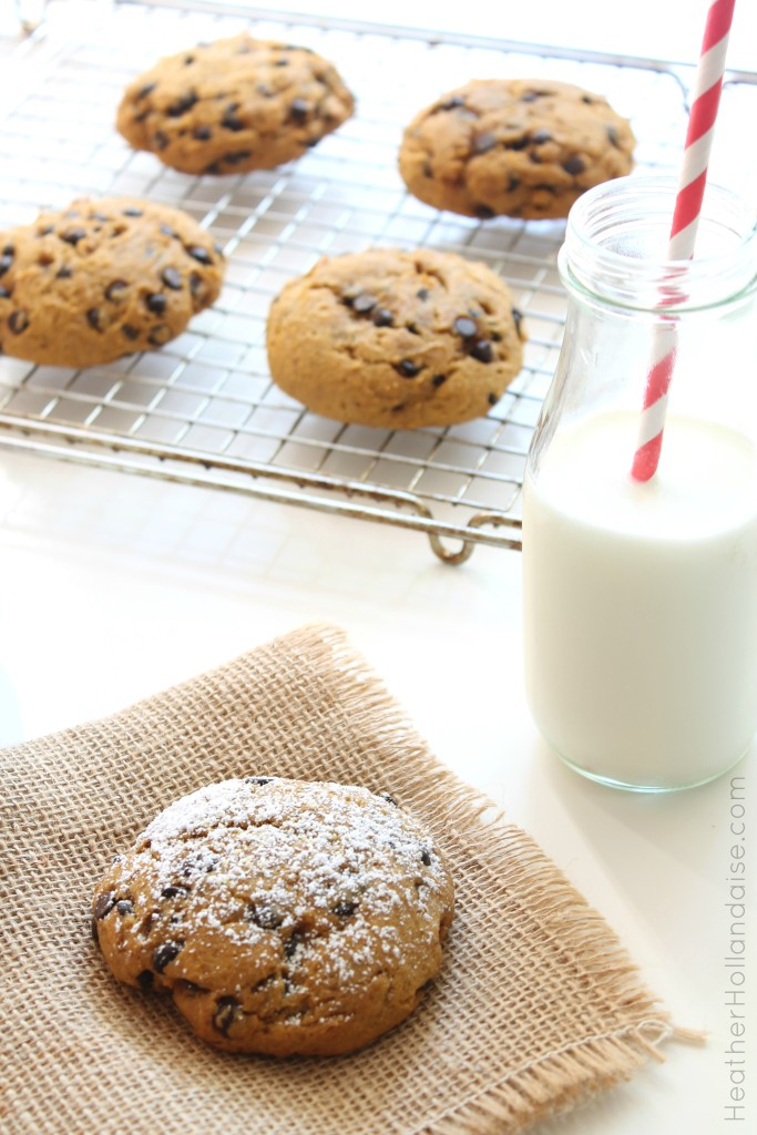 Gluten Free Chocolate Chip Pumpkin Muffin