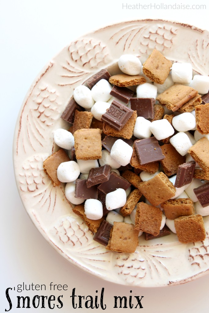 Gluten Free Smores Trail Mix